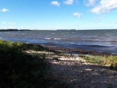 strand-zierow-3.jpg