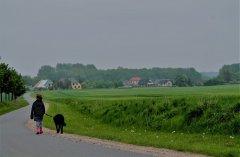 ostseeradfernweg.jpg